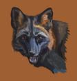 colorful portrait of black fox vector image