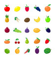 Flat fruit set