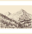 mountains panorama alpine forest drawing vector image