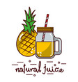 pineapple fruit and natural juice glass and straw vector image vector image
