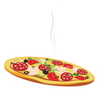 Pizza isolated on white background vector image