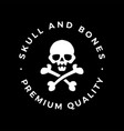skull and bones logo icon vector image vector image