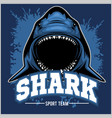 strong shark sports mascot vector image vector image