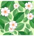 seamless flowers and leaves vector image