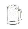 beer sketch vector image