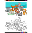 cats characters group coloring book vector image vector image