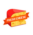 logotype for cheese shop - triangle piece of a vector image vector image