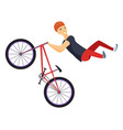 ride on a sports bicycle bmx cyclist performing a vector image