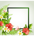 Summer background with red tropical flowers vector image