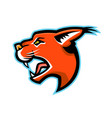 caracal head side mascot vector image vector image