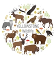 Circle set of plants and Yellowstone vector image vector image