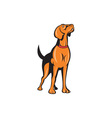 Cocker Spaniel Golden Retriever Dog Cartoon vector image