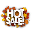Hot sale background with maple leaves vector image vector image