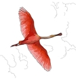 pink Flamingos in flight vector image