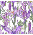 seamless pattern with crocus and herbs endless vector image vector image