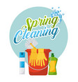 spring cleaning poster bucket air freshner gloves vector image vector image