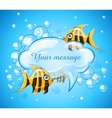 aquarium with gold fishes and vector image