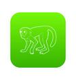 capuchin icon green vector image