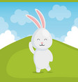 cute rabbit in landscape vector image vector image