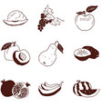 doodles fruit small selection on white background vector image vector image