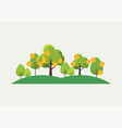 money trees concept vector image vector image