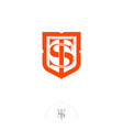 s and t letters orange emblem shield vector image