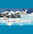 scene with snow seals on ice vector image vector image