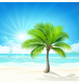 tropical beach vector image vector image