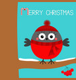 merry christmas bullfinch winter bird on rowan vector image