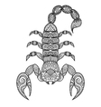 Scorpion coloring book vector image vector image