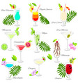 set of popular summer cocktails isolated on white vector image