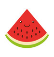 watermelon tropical and exotic fruit kawaii vector image vector image