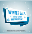 winter sale origami banner vector image