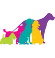 Dog Silhouettes Colour vector image vector image
