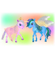 fairy pegasus and beautiful ponies vector image
