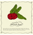 Retro background with juicy acerola fruit vector image