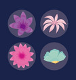 set of tropical leafs icons vector image