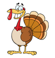 Turkey Cartoon Character vector image