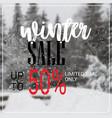 winter sale lettering design season shopping vector image vector image
