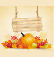 autumn background with leave and vegetable and vector image