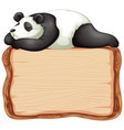 board template with cute panda on white background vector image vector image