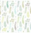 herbal seamless pattern vector image vector image