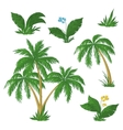 Palm trees flowers and grass vector | Price: 1 Credit (USD $1)
