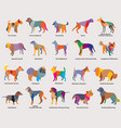set of colorful mosaic dogs silhouettes-4 vector image vector image