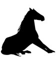 silhouette of horse sitting vector image vector image