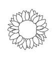 sunflower seed head flower vector image