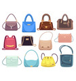 womens bags ladies handbags with fashion vector image