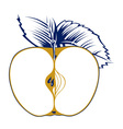 apple seed vector image