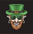 leprechaun piercing head st patricks day vector image