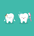teeth plaque terth shiny white tooth mouth vector image